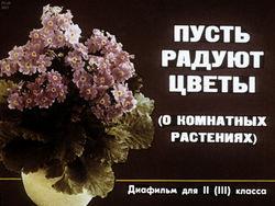 Диафильм Пусть радуют цветы (о комнатных растениях) бесплатно