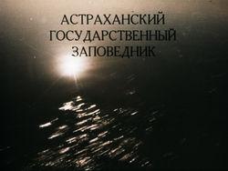 Диафильм Астраханский государственный заповедник бесплатно