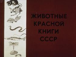 Диафильм Животные Красной книги СССР бесплатно