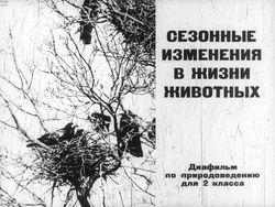 Диафильм Сезонные изменения в жизни животных бесплатно