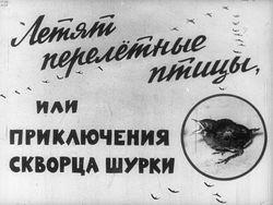 Диафильм Летят перелетные птицы, или Приключения скворца Шурки бесплатно