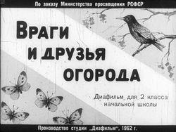 Диафильм Враги и друзья огорода бесплатно