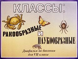 Диафильм Классы: ракообразные и паукообразные бесплатно