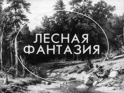 Диафильм Лесная фантазия бесплатно