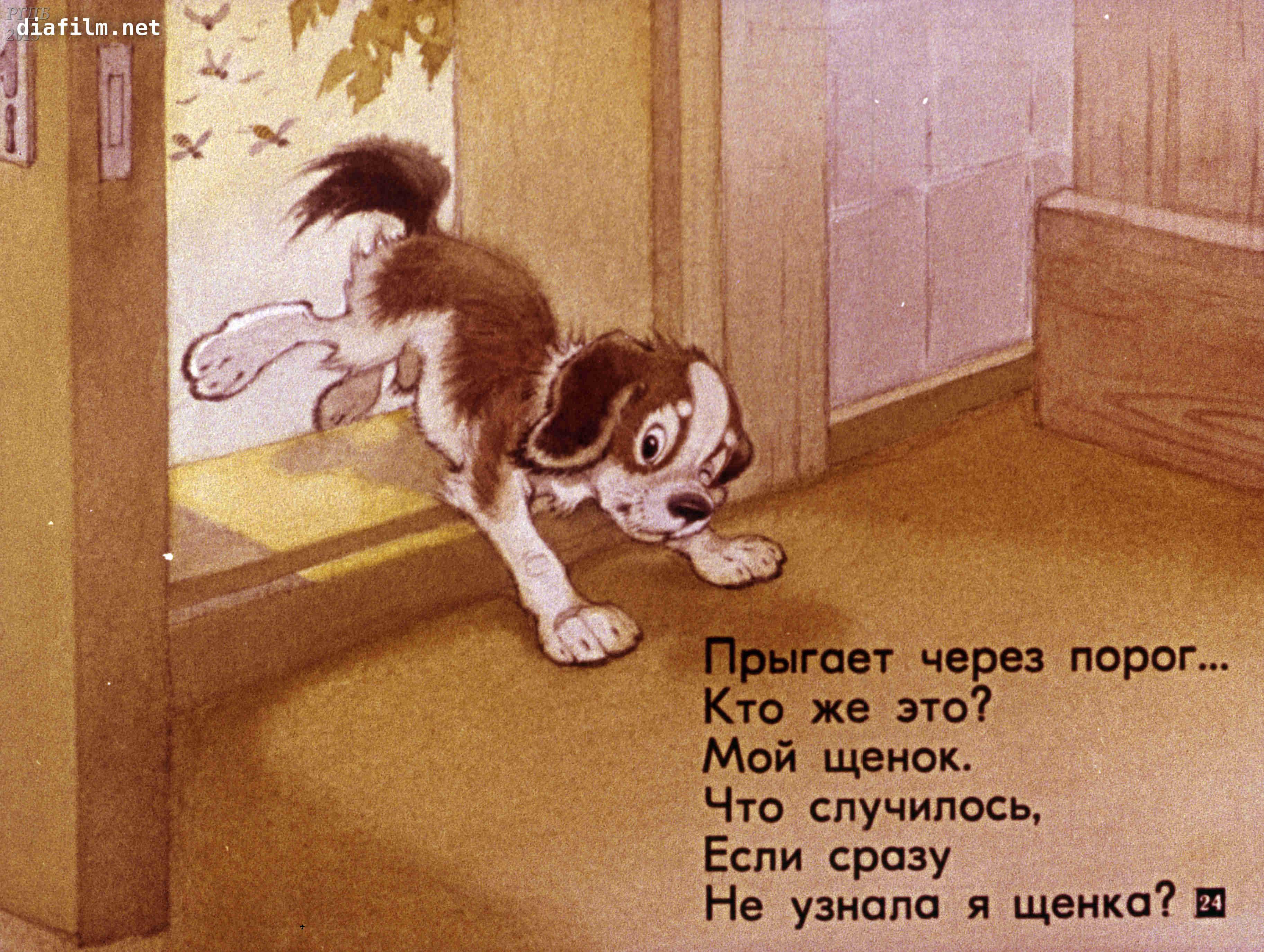 у меня пропал щенок стих с картинками надейтесь увидеть