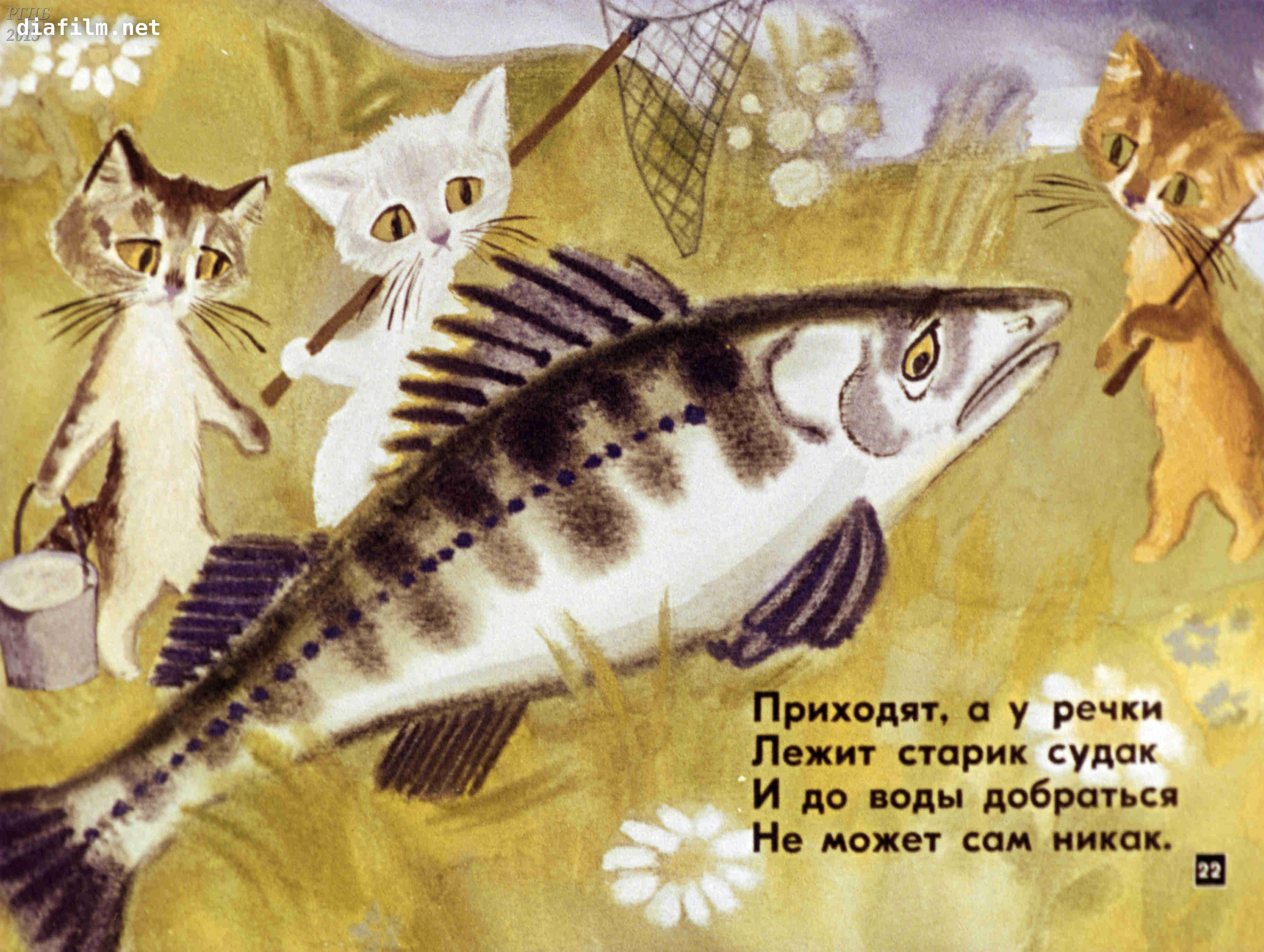 Котята токмакова читать с картинками, днем рождения открытках