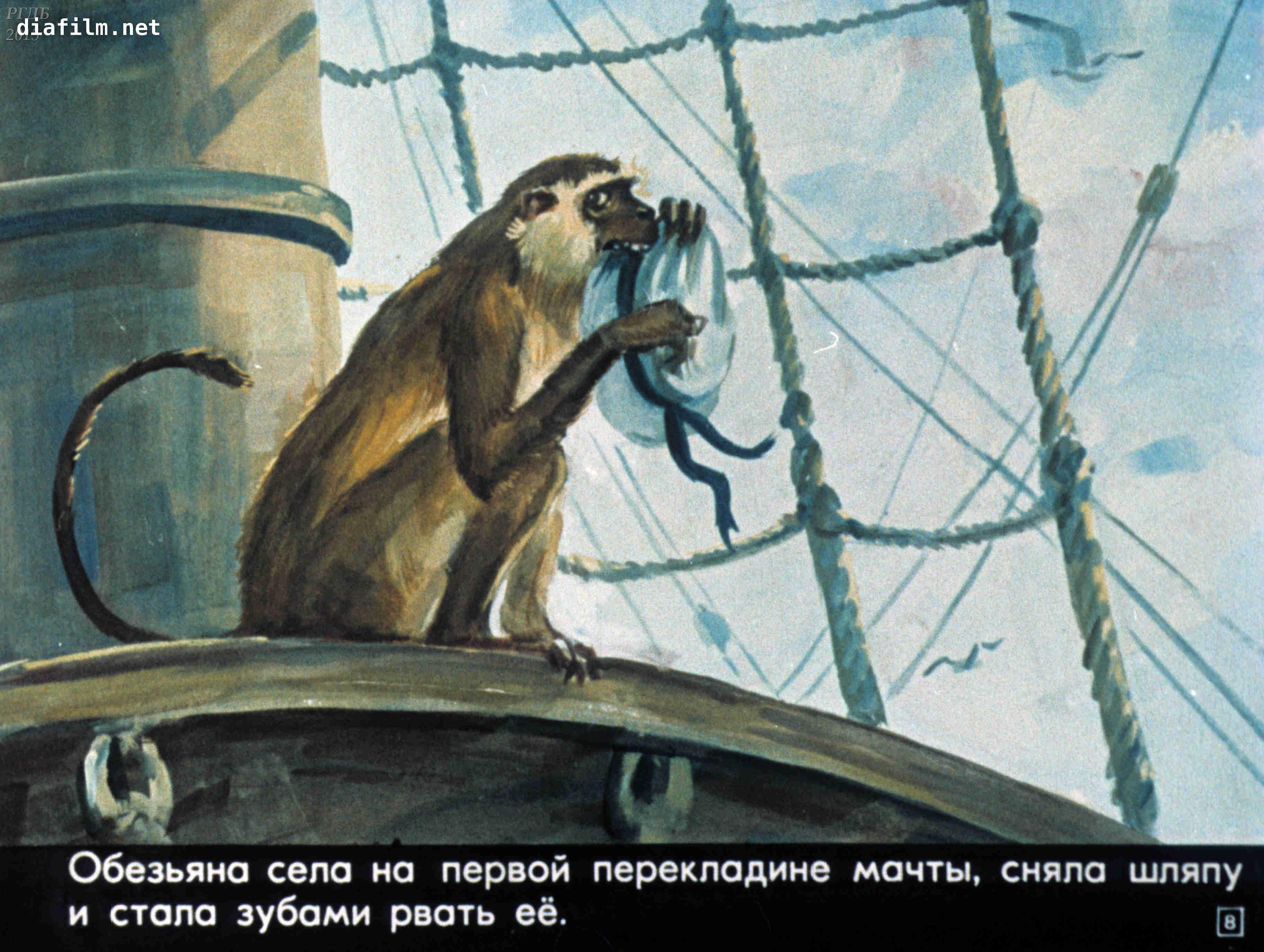 жители картинки прыжок льва толстого валентинович годам подтянут