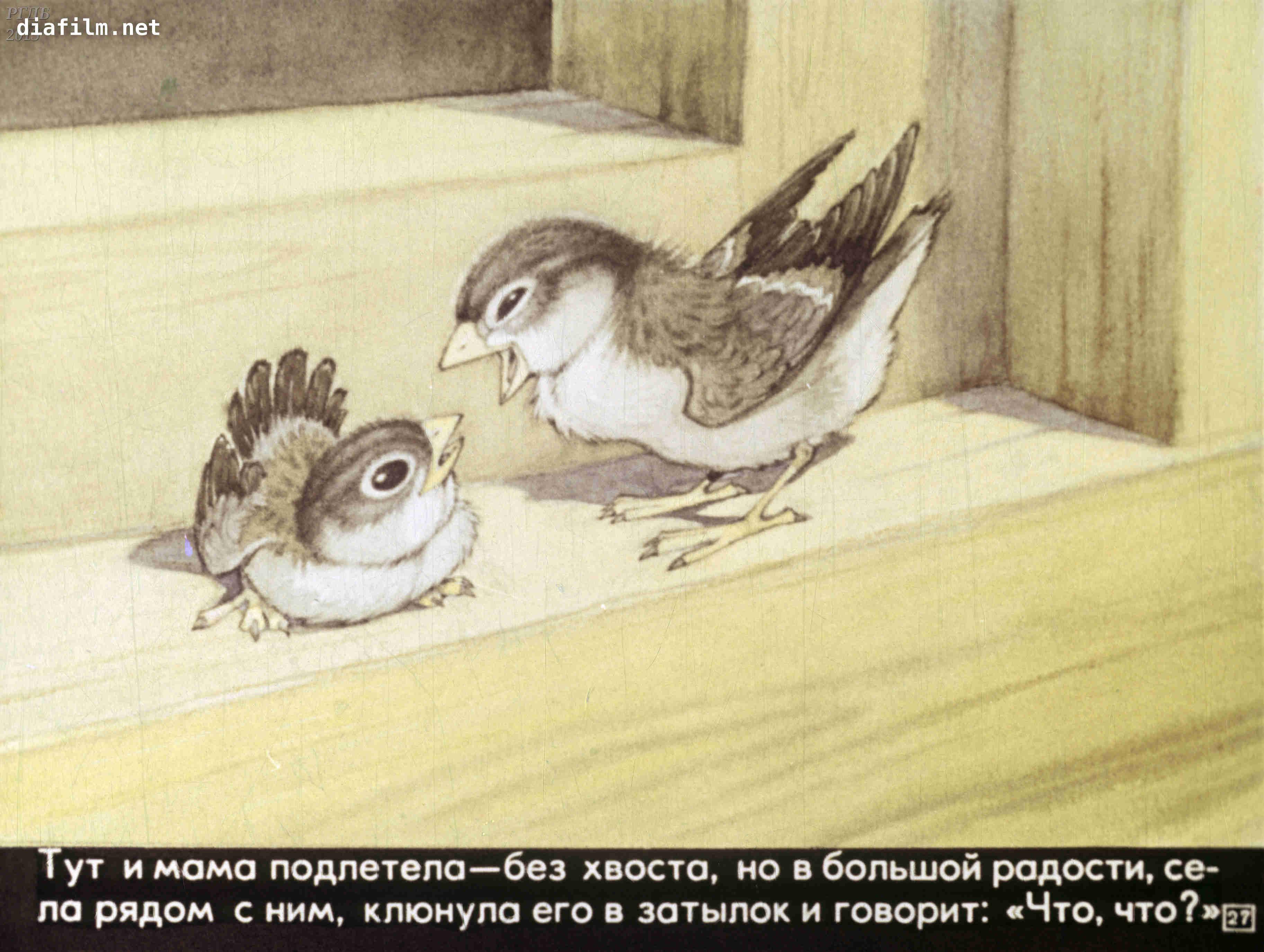 Иллюстрации к сказке горького воробьишко