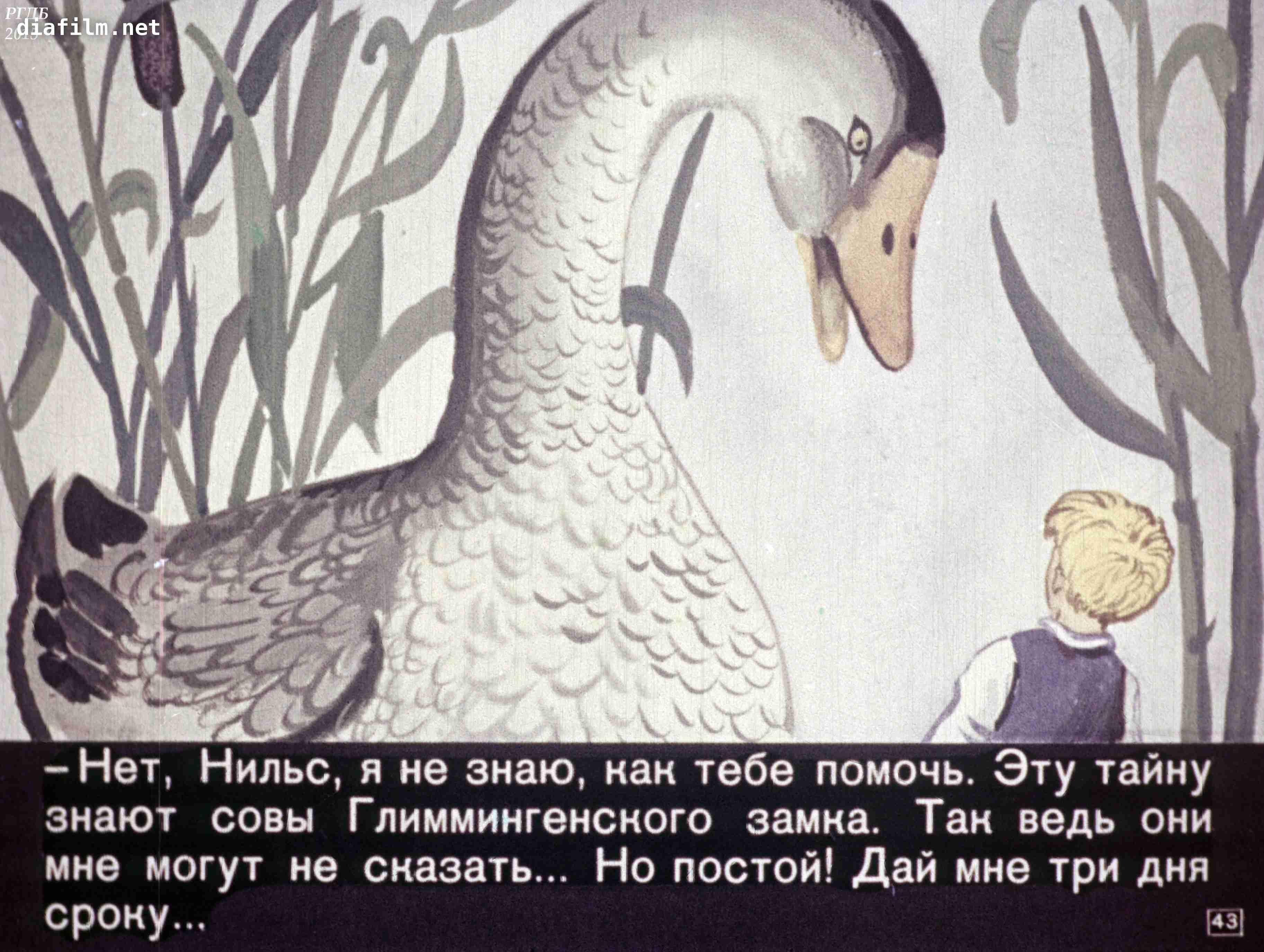 раскраска нильса из сказки чудесное путешествие нильса с дикими гусями плюсы минусы имеют