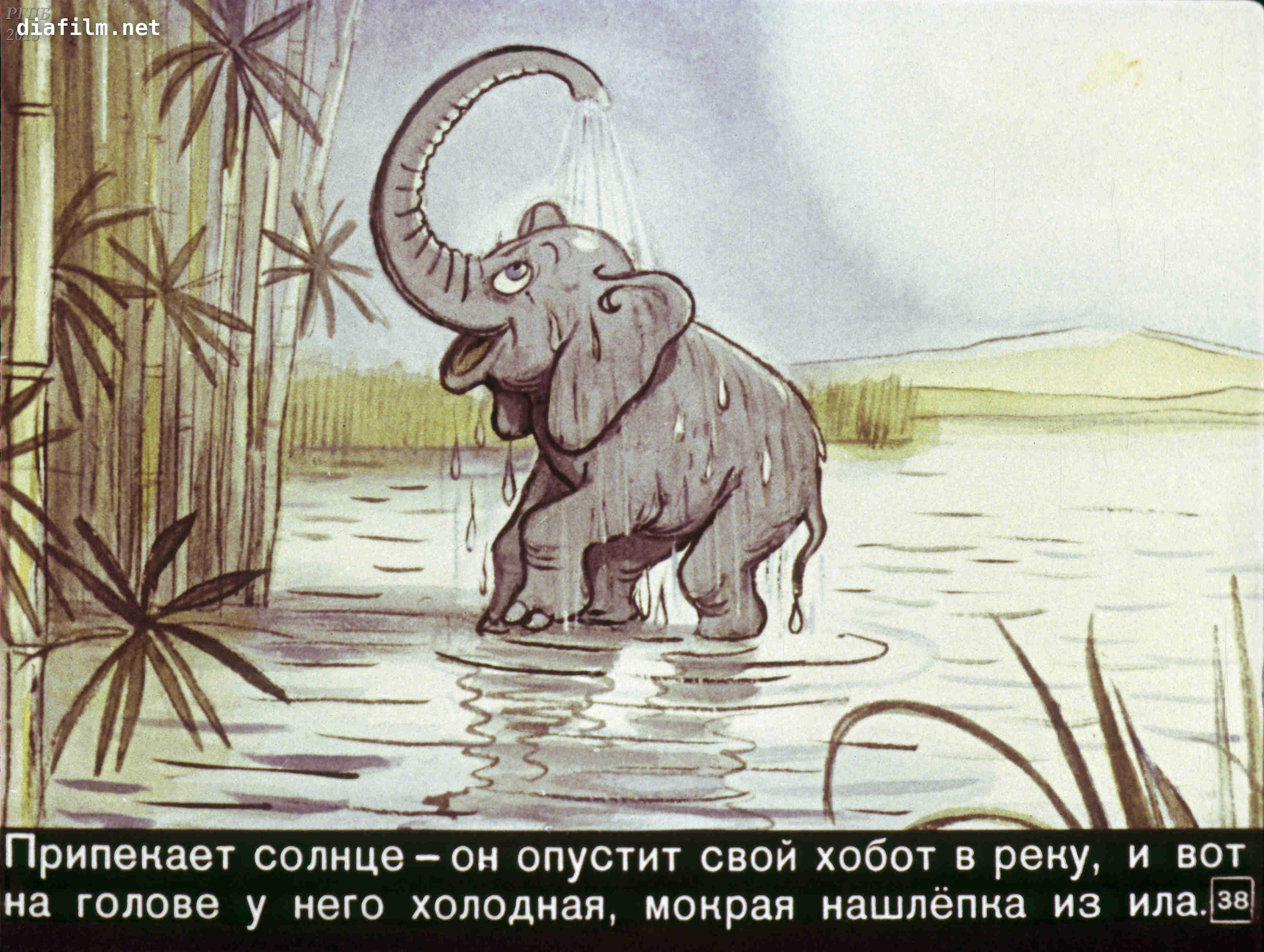 иллюстрации к сказке слоненок замечала восторженных